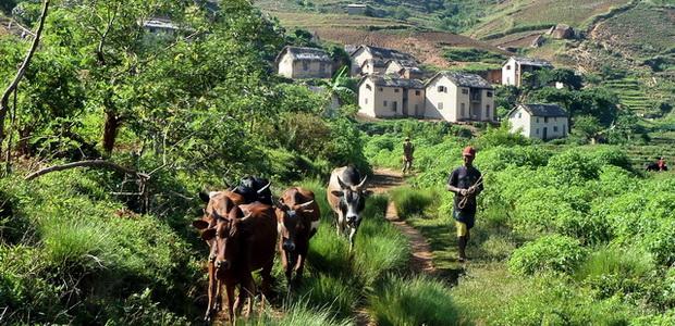village Andohasa
