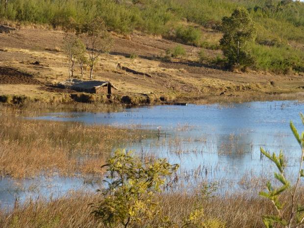 région des lacs, lac Dangobe