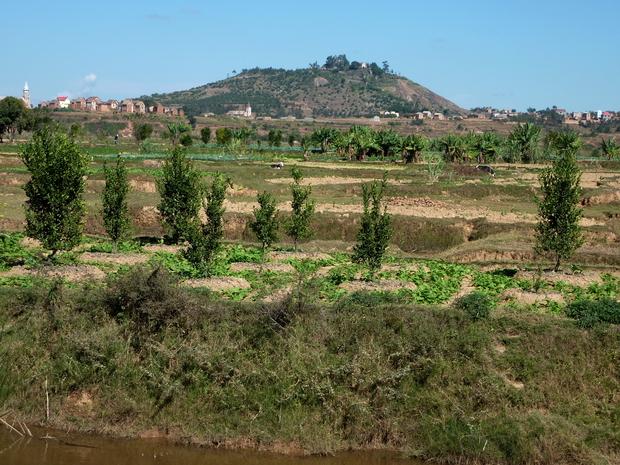 Andriamanjakatokana est enseveli à Ambohitrimanjaka tandis que son fils appelé aussi Andriamanjakatokana repose à Anosivato
