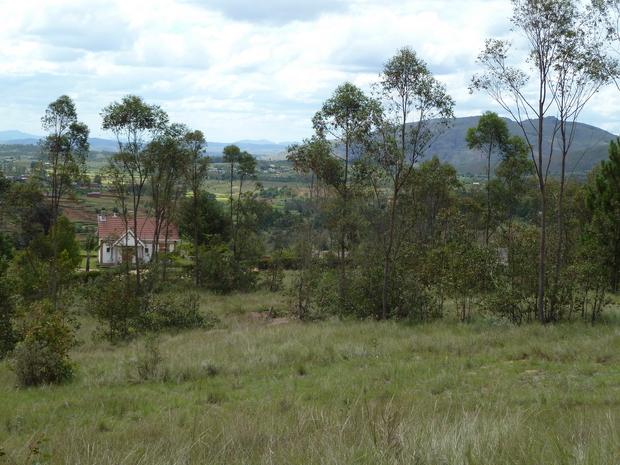 propriété du célèbre acteur malgache Rajao