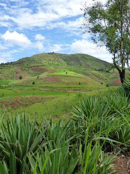 massif Fiadanana