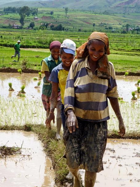 paysannes malgaches