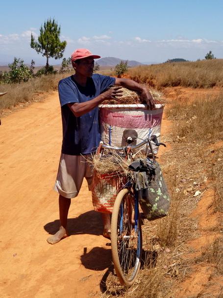 Sur le vélo plus de 1200 oeufs à transporter sur le marché de Mahitsy
