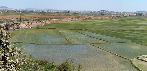 Marais de Laniera Ambohimanarina Antehiroka
