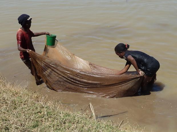 """pêche de la crevette noire """" fozaorana"""