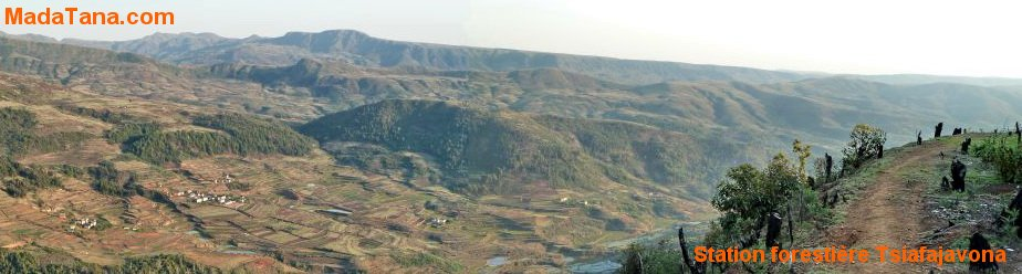 circuits Ankaratra : station forestière du Tsiafajavona