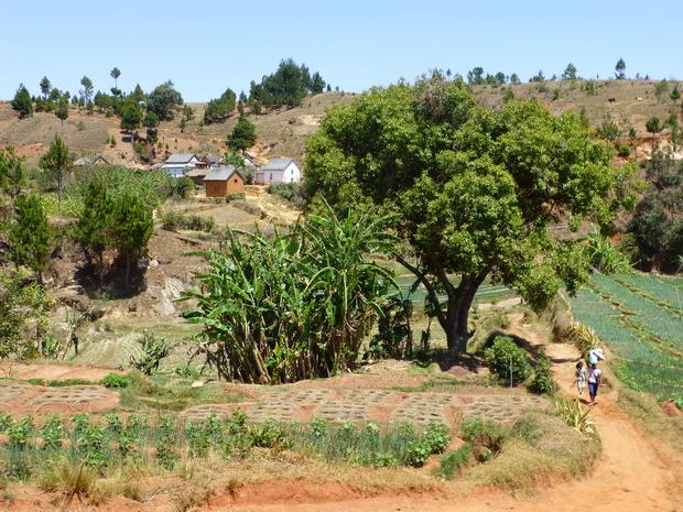 village et rizière Antsahalina