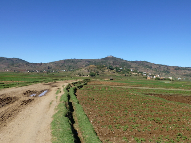 plaine de Vinaninony