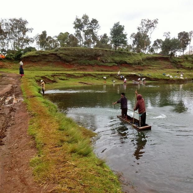 pêche et lessive