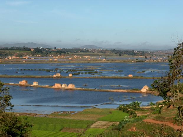 inondations mars 2015 rizières Antanjondroa