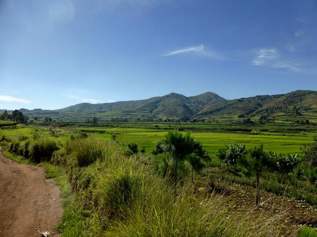 plaine du village Tsinjovary à l'horizon la chaine du massif Antasahamaina  1° sommet à gauche le sommet Akaroka notre objectif de ce matin