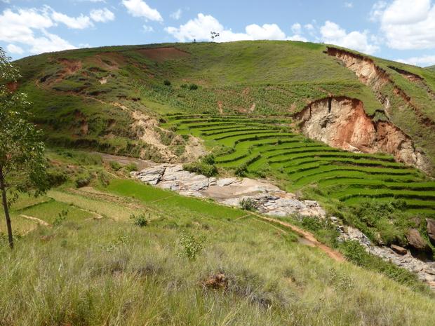 rivière Andrainibe et ses rizières