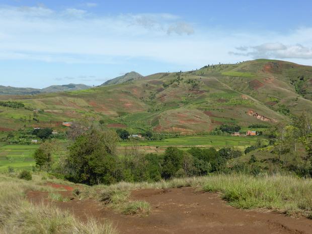 Village Tarazo