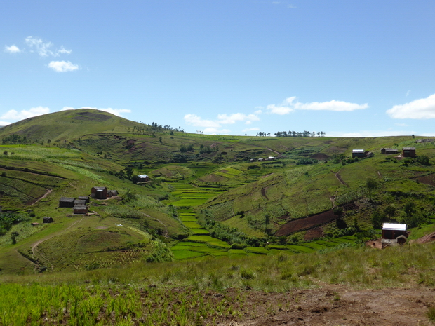 village Avarabohitra