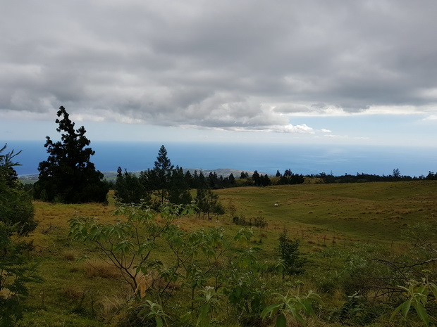chemin forestier de l'Eperon